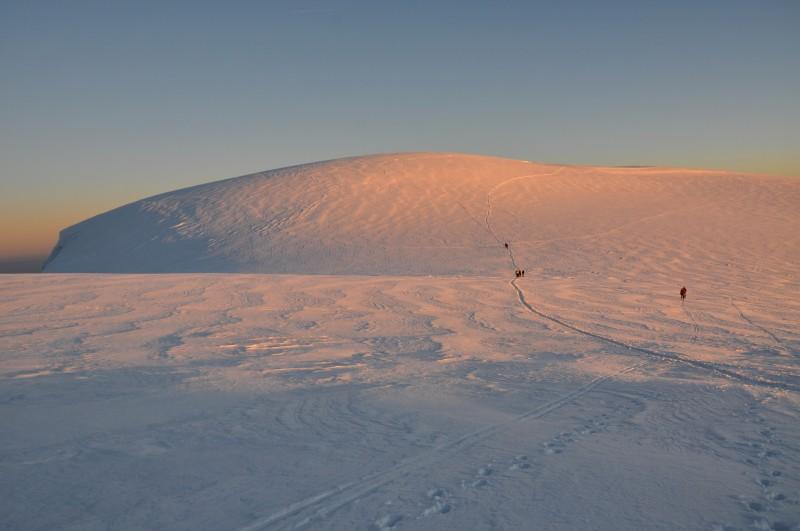 Ledové pole