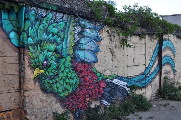 Grafit v Boquete