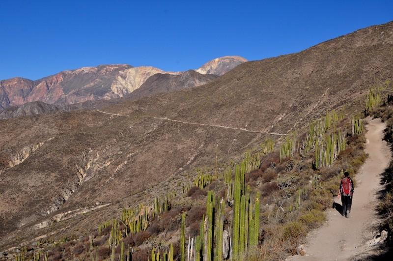Cesta z Charcany do Pichy
