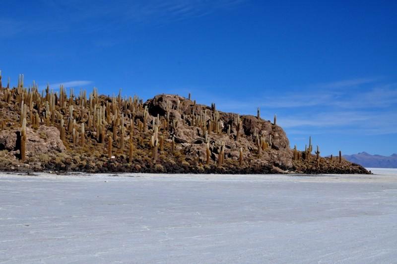 Ostrov Isla Incahuasi