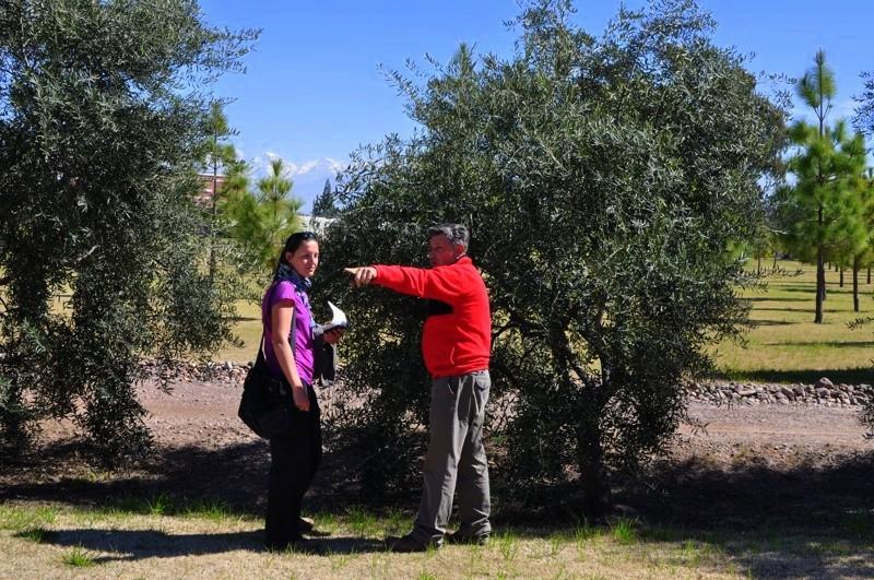 S Carlosem na olivové plantáži