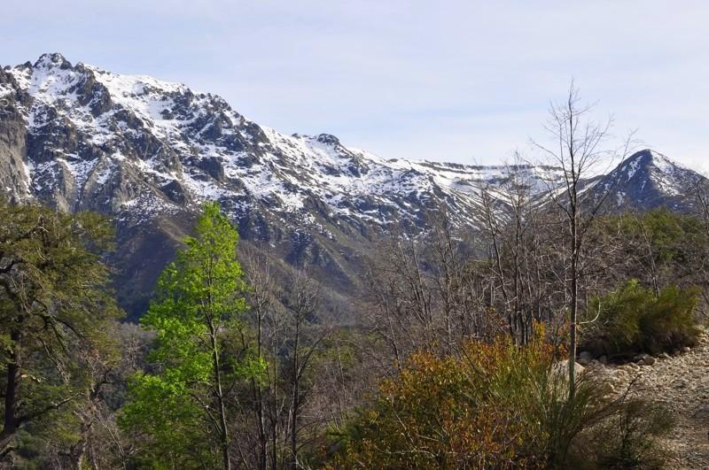 Národní rezervace Lircay