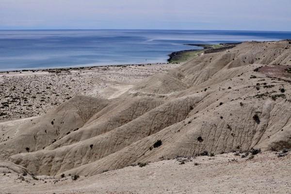 Nedaleko Puerto Madryn