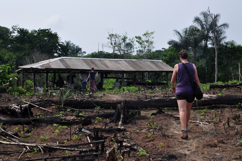 Na maniokovém poli